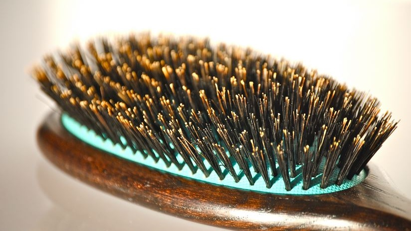 Sportnette Boar Bristle Brush Reviewed And Recommended