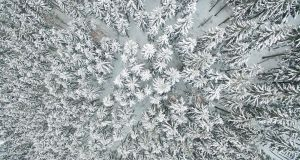 BIRD'S EYE VIEW: Aerial view shows a snow-covered forest near Schulenburg im Oberharz in the Harz region, central Germany. Photograph: Getty Images