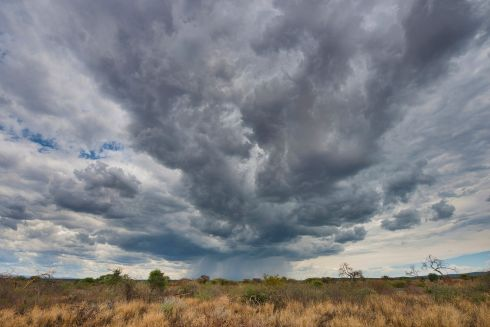 Storm clouds gather over Kavango province in Namibia. The area is often hit by drought but 2016 was the worst for a long time. Although the rainy season will undoubtedly bring rain, the question is whether it will be enough to stave off continuing drought. Flash floods can also pose a hazard for farmers and their vulnerable crops.