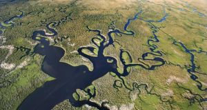 Aerial shot of Florida Everglades. Photograph: Jupiter/Getty.
