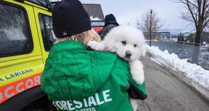 An Italian Forestry Corp officer officer holds one of three puppies that were found alive in the rubble of the avalanche-hit Hotel Rigopiano. Photograph: EPA/Italian Fire Department