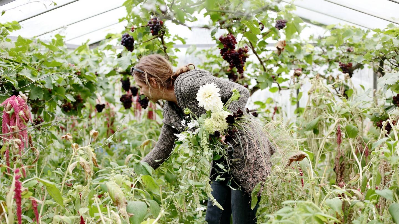 Say it with ecoflowers izmirmasajfo