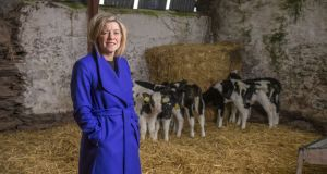 Prof  Thia Hennessy, the new head of UCC's Department of Food Business and Development