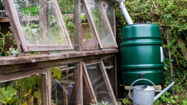 Whatever the outcome with water charges, rainwater is a free and plentiful resource for those prepared to harvest it