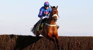 Cue Card, ridden by Paddy Brennan, clears the last fence before going on to win The Betfair Ascot Chase. Photograph: Julian Herbert/PA
