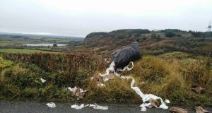 Fianna Fáil TD Niamh Smyth says she is horrified by the growing illegal dumping problem in Cavan and Monaghan