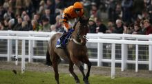 Tom Scudamore onboard Thistlecrack. the favourite for the Cheltenham Gold Cup has been ruled out of the race with an injury. Photo: Alan Crowhurst/Getty Images
