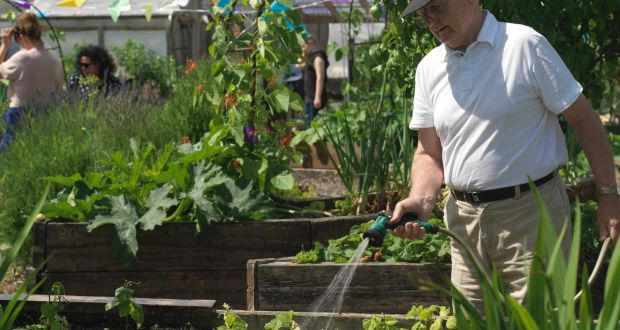 Clever Design Opens Up Gardening For Less Able Bodied People