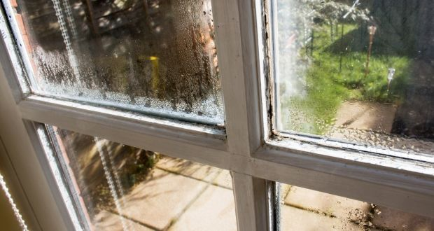Apartments Are Particularly Complex When It Comes To Dealing With Condensation A