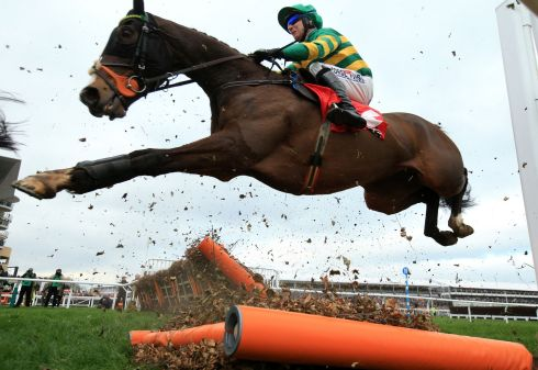 Harrington strikes Gold with Sizing John