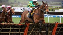 Defi Du Seuil ridden by Richard Johnson goes on to win the JCB Triumph during Gold Cup Day of the 2017 Cheltenham Festival at Cheltenham Racecourse. Photo: Mike Egerton/PA
