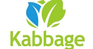 Kabbage, headquartered in Atlanta, has pioneered a financial services data and technology platform to provide to small businesses in minutes.