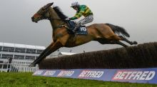 On The Fringe, with Nina Carberry up, jumps the last on the way to winning the Foxhunter Chase at the Cheltenham Festival in 2015. Photograph: Getty Images