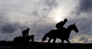 From April 1st, in Britain, anyone applying to join a course for apprentice or conditional jockeys will have to undergo a pre-licence assessment. Photograph: Inpho