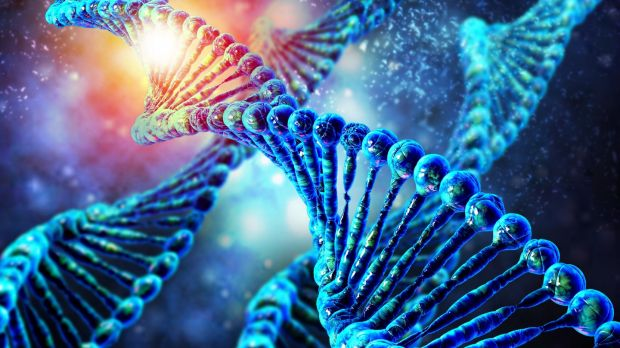 Genome editing is a way of making specific changes to the DNA of a cell or organism