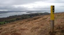 Walk for the weekend: Lush woods and open heath above Bantry Bay