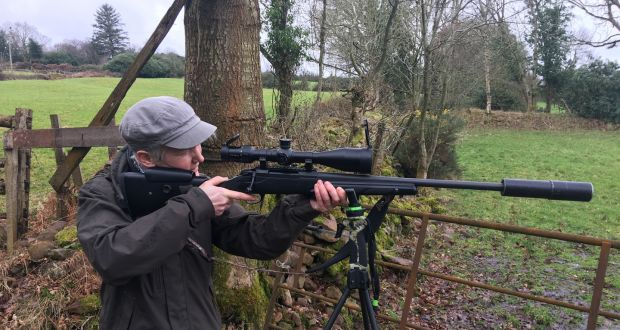 We're going on a Co Tipperary deerhunt