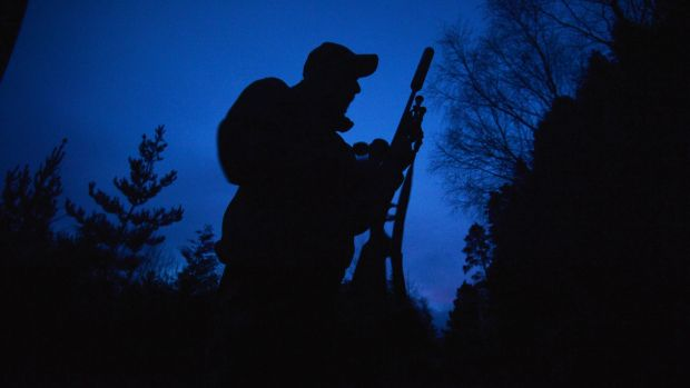 Deer hunter John Lalor stalking for deer near Cahir, Co Tipperary, with his .308 calibre rifle. Photograph: Alan Betson