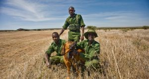 A sniffer dog and dog handlers at Loisaba Conservancy. The dogs protect people and animals against poaching and crime. Photograph: Lar Boland