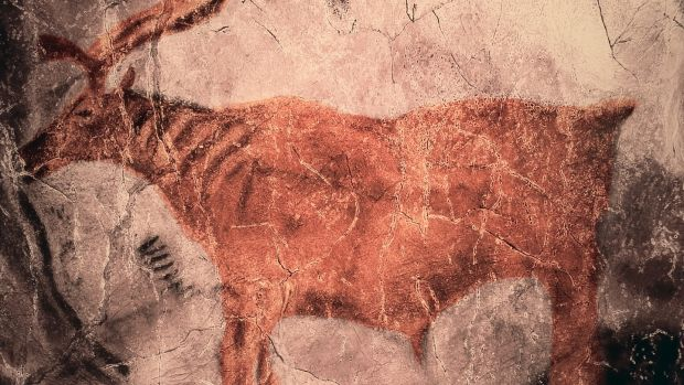 Prehistoric rock painting of Reindeer in Tito Bustillo cave, Asturias.