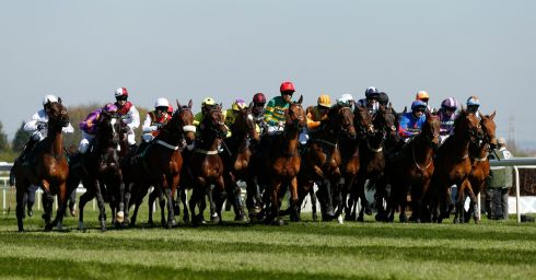 A view of the Gaskells Handicap Hurdle. Photograph: Andrew Boyers/Reuters