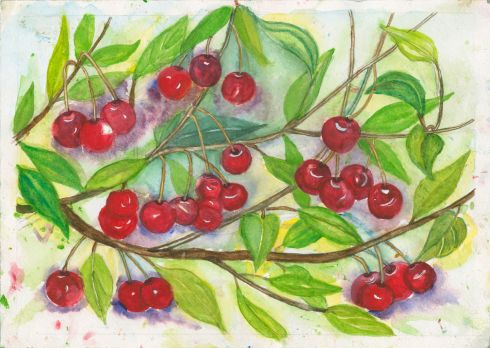 Category E- third prize (€125 Art & Hobby gift voucher) went to Westmeath student Xier Lin (7), from St Mary's Primary School, Mullingar, for a composition entitled Sweet Cherries.