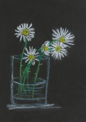 Category F (6 years and younger), the youngest age group in the competition, first prize winner of a €150 Art & Hobby gift voucher was Eibhlin Murphy (6), a pupil at St Joseph's Girls National School, Clonakilty, Co Cork, for her plant study entitled Daisies.