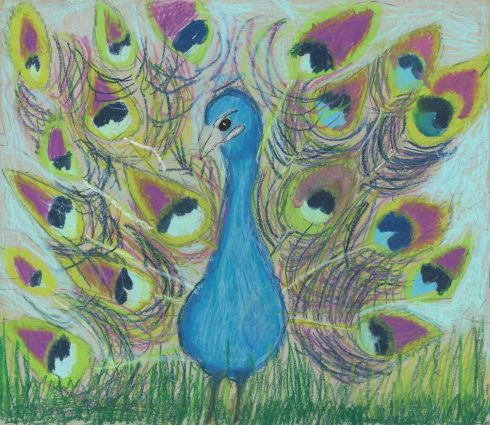 Category F - Second prize (€125 Art & Hobby gift voucher) was won by Eve Aherne (6), from St Marnock's National School, Portmarnock, Co Dublin, for her colourful entry entitled Fluttering Feathers.