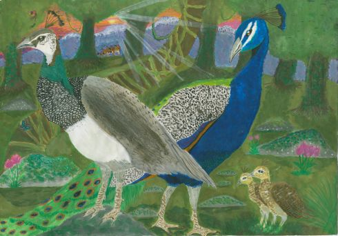 Category G, reserved for entries from children with special needs, first prize of a €400 Art & Hobby gift voucher was won by James Wellwood (17), a student at Colaiste Mhuire, Johnstown, Co Kilkenny, for his painting entitled Peafowl In The Forest.