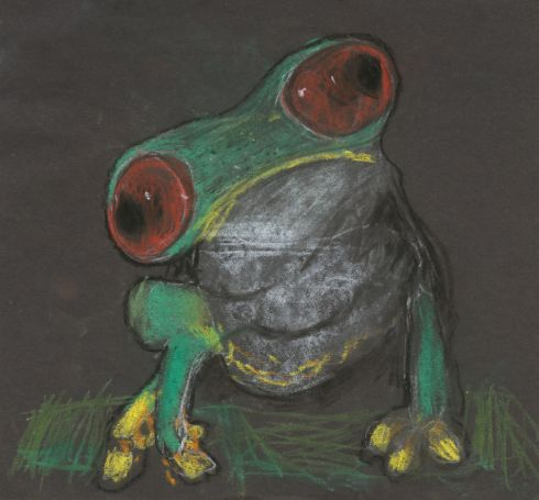 Category G - second prize (€300 Art & Hobby gift voucher) went to Antrim student Rhys Newbronner (15), from Jordanstown School, Newtownabbey, for his entry entitled Frog.