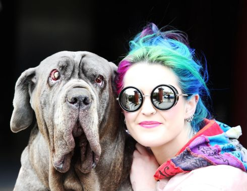 HOUND DOG: Suzie Koumarianos with her Neapolitan Mastiff named Domina arrive at the Dylan Hotel Dublin for a doggy Brunch hosted by Pettura in the hotel.Photo Leon Farrell/Photocall Ireland.