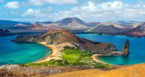 The Galápagos Islands is one of the most renowned wildlife-watching destinations in the world. Photograph: Getty
