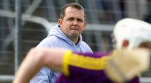 Wexford hurling manager Davy Fitzgerald. Photograph: Ken Sutton/Inpho