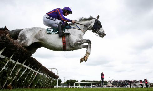 Ruby Walsh onboard Diakali, on his way to winning the Rathbarry & Glenview Studs Hurdle. Photograph: Inpho