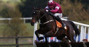 In pole for Punchestown: Apple's Jade is being aimed at the three-miler or the mares' race. Photograph:   Brian Lawless/PA