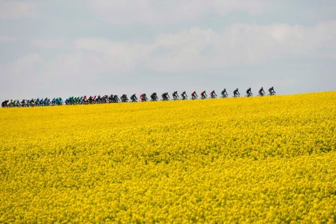 MAKING TRACKS: The pack rides from Binche to Mur de Huy during the Flèche Wallonne cycling race in Belgium. Photograph: Philippe Lopez/AFP/Getty Images
