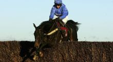 Paul Moloney and State of Play jump the last fence before landing The Hennessy Cognac Gold Cup Steeple Chase Race run at Newbury Racecourse in 2006. Photograph: Getty Images