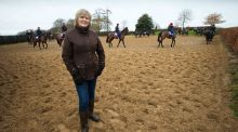 "Jessica Harrington: It's only an age [70]. Touchwood I feel great, my arm is mended, Punchestown's next week and there's plenty to be getting on with."" Photograph: Morgan Treacy/Inpho"