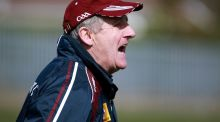 Westmeath hurling manager Michael Ryan. Photograph: Dylan McIlwaine/Presseye/Inpho