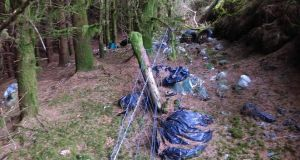 An Irish Times reader reported dumping in north Cork, and took photographs of the illegal dumping in the woods