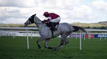 Bryan Cooper riding Disko win The Growise Champion Novice Steeplechase at Punchestown. Photograph: Getty Images