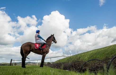 Jamie Codd on Enniskillen takes a look at Rubys Double before going on to win the first race of the day. Photograph: Inpho
