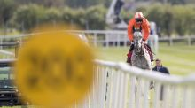 Labaik under jockey Jack Kennedy plays catch up after failing to start during the  champion novice hurdle at Punchestown on Tuesday. Photograph: Morgan Treacy/Inpho