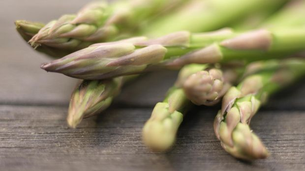 Asparagus tip: use a sharp knife to carefully cut them about 5-7cm below ground when they're about 12-18cm long. Photograph: Richard Johnston