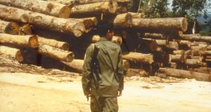 A Cambodian soldier guards timber close to Khmer Rouge lines in Koh Kong province in southwest Cambodia. Photograph: Global Witness