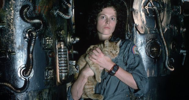 2c187277e9b Sigourney Weaver as Ellen Ripley with Jones the cat in Alien. A long-mooted