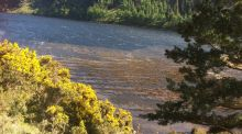 Walk for the Weekend:  Haunting beauty of Glendalough