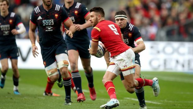 Wales scrumhalf Rhys Webb in action against France. He is the closest thing to Agustín Pichot in these isles. Photograph: Ryan Byrne/Inpho
