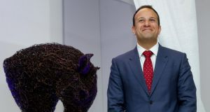 Fine Gael leadership race: Leo Varadkar. Photograph:  maxwellphotography.ie