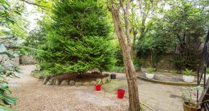 A large fir tree at the centre of the rear garden is one of a number of mature trees